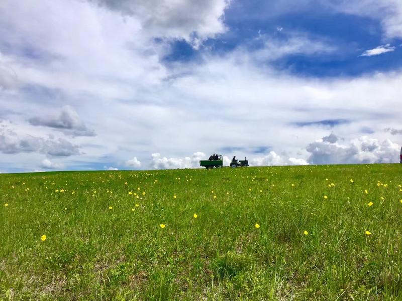 最美的风景都在两旁,从窗前划过,天地间,就只剩下我们