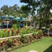 棕櫚林別墅