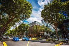 新加坡-尊敬的会员